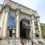 American Museum of Natural History, com mais de 36 milhões de exemplares.