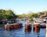 Delta do Tigre