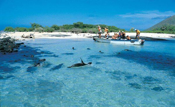 Ilhas de Galápagos - Equador