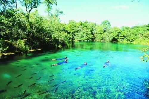 Pessoas nadando no Rio da Prata em Bonito-MS